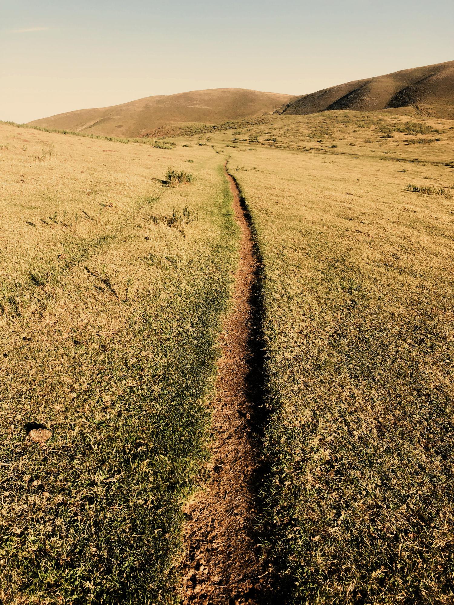 Single track in Kyrgyzstan.