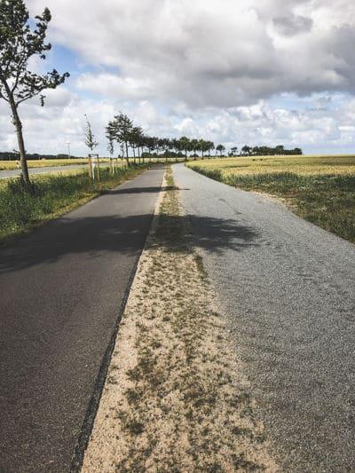 Chose between road ad gravel