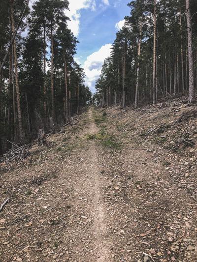 Orbit Thüringen - 4.800 meters of climbing